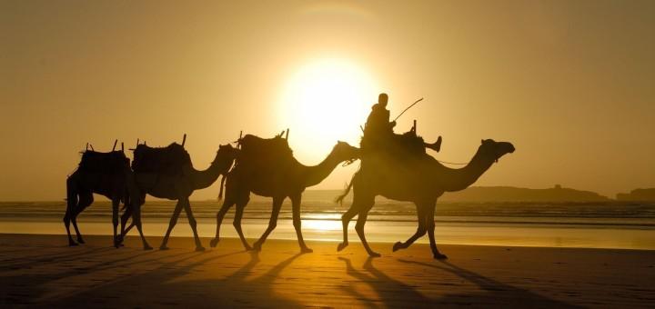 Марокко зі Львова