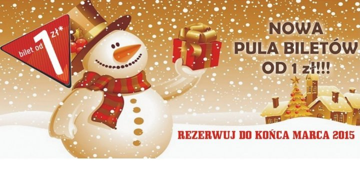Жешув Варшава необус
