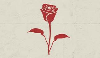 scum_rose