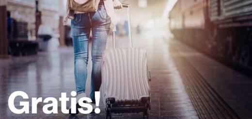 ernest багаж