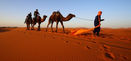 авіаквитки марокко