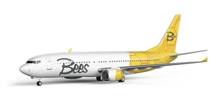 Bees Airline открывает новый рейс - Херсон - Тбилиси! -
